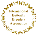 International Butterfly Breeders Association Logo